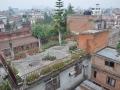 Rooftop garden in Nepal